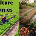 Agriculture Companies Names Ideas